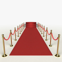 The Awards Show & Red Carpet Fundraising Gala!